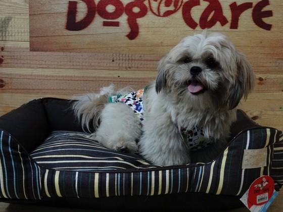 Caminhas para Cachorro de Grande Porte Atacado Vila Prudente - Caminhas para Cachorro de Tecido