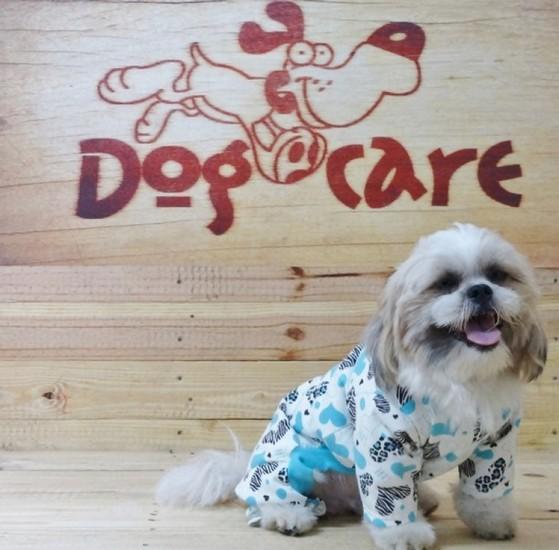 Distribuidor de Roupinha de Soft para Cachorro Jardim América - Fábrica de Capa Veludo de Cachorro