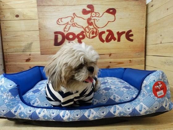 Distribuidor de Roupinhas de Cachorro para Revender Jockey Club - Fábrica de Capa Veludo de Cachorro