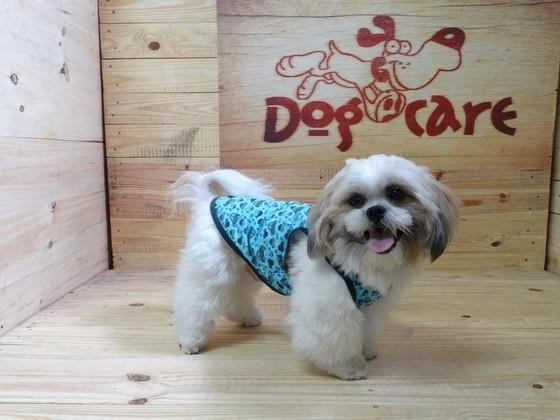 Fábrica de Capa Soft para Cachorro Valores Cubatão - Fábrica de Capa Veludo de Cachorro