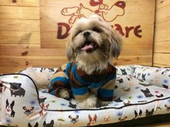 Fábrica de Cobertores de Cachorro Valores Ribeirão Pires - Fábrica de Manta Soft para Cachorro