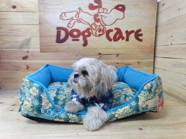 Fábrica de Fralda de Cachorro para Revenda Atacado Cidade Dutra - Fábrica de Fralda Absorvente Cachorro