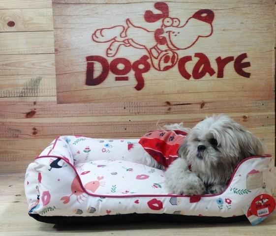 Fábrica de Fralda Descartável para Cachorro Luz - Fábrica de Fralda Absorvente Cachorro