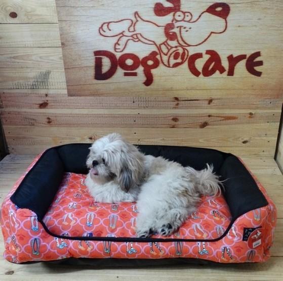 Fábrica de Peitoral com Guia de Cachorro Bauru - Roupinhas e Acessórios para Cachorros