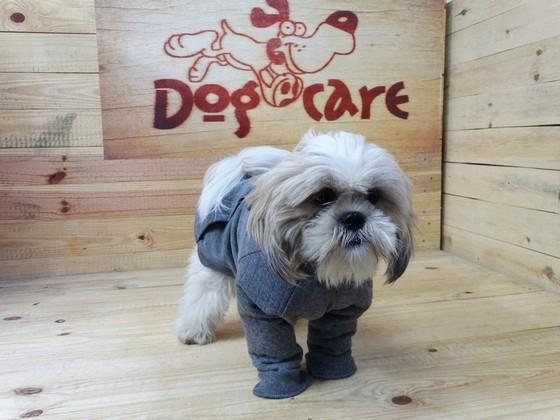 Fábrica de Peitoral de Lona para Cachorro Valores Cidade Ademar - Fábrica de Capa Veludo de Cachorro