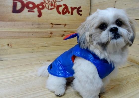 Fábrica de Roupinha de Soft para Cachorro Freguesia do Ó - Fábrica de Capa Veludo de Cachorro