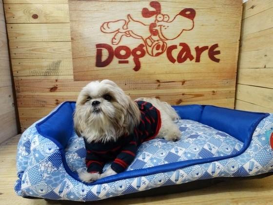 Fábrica de Roupinhas de Cachorro para Revender Brasilândia - Fábrica de Capa Veludo de Cachorro