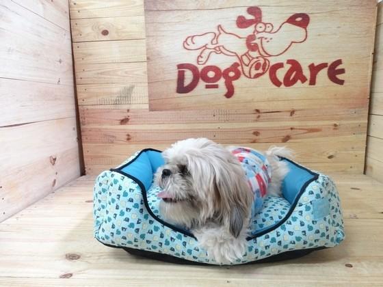 Fábrica de Roupinhas para Cachorro com Moldes Alphaville - Fábrica de Capa Veludo de Cachorro