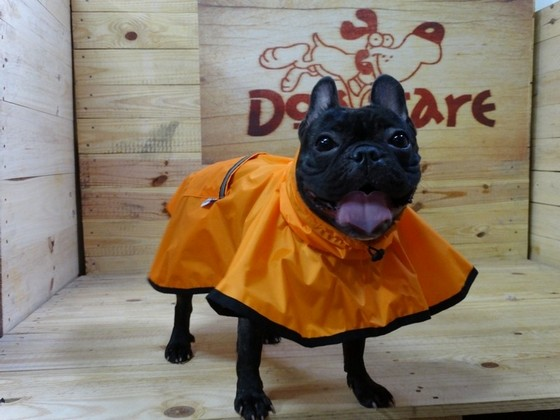 Fábricas de Capa Soft para Cachorro Franca - Fábrica de Capa Veludo de Cachorro
