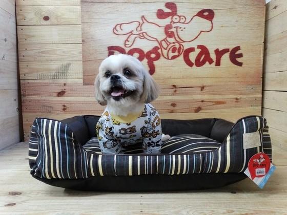 Onde Encontrar Fabricante de Cobertores de Cachorro de Algodão Ibirapuera - Fábrica de Manta Soft para Cachorro
