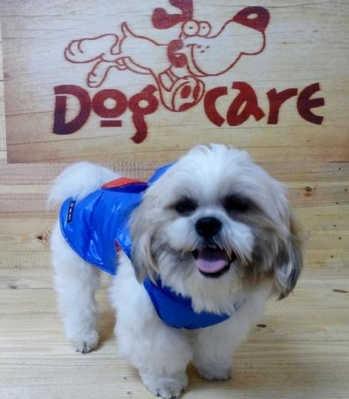 Onde Encontro Fábrica de Capa Soft para Cachorro Itanhaém - Fábrica de Capa Veludo de Cachorro