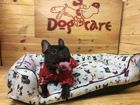 Onde Encontro Fábrica de Cobertor Microfibra de Cães Água Rasa - Fábrica de Manta Soft para Cachorro