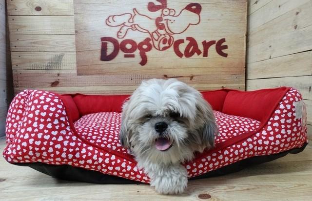 Onde Encontro Fábrica de Fralda Descartável para Cachorro Jabaquara - Fábrica de Fralda Absorvente Cachorro