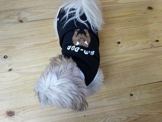 Roupinha de Moletom para Cachorro Higienópolis - Fábrica de Capa Veludo de Cachorro