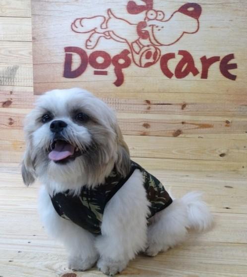Roupinha de Soft para Cachorro Atacado Guarujá - Roupinhas e Acessórios para Cachorros