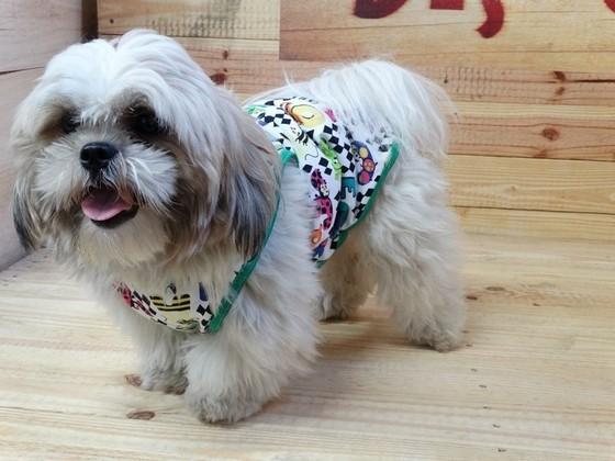 Roupinhas de Cachorro para Revender Preço Ribeirão Pires - Fábrica de Capa Veludo de Cachorro