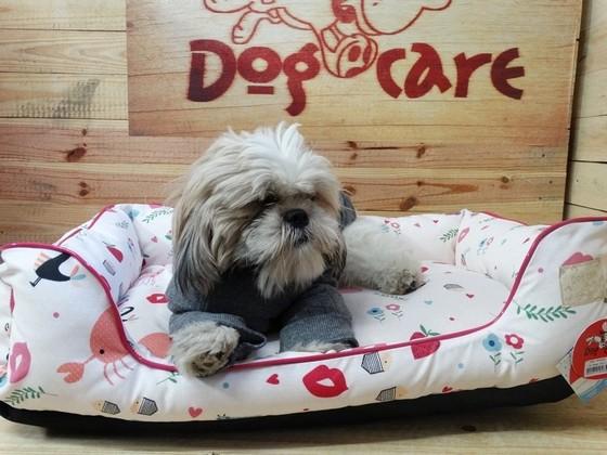 Roupinhas para Cachorro de Soft Atacado Trianon Masp - Fábrica de Capa Veludo de Cachorro