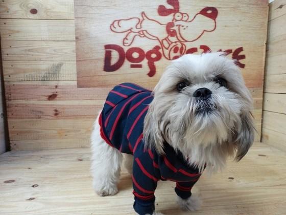 Roupinhas para Cachorro Preço Franca - Fábrica de Capa Veludo de Cachorro