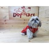 comprar roupa para cachorro filhote Campo Grande