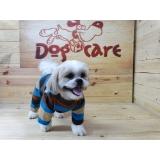 comprar roupa para cachorro médio Parque São Rafael