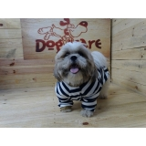 comprar roupa para cachorro pequeno Jardim São Luiz