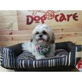 fábrica de caminhas para cachorro de tecido São Caetano do Sul