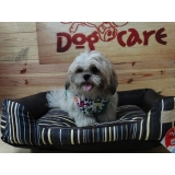 fábrica de colchão para cães Lauzane Paulista