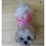 fábrica de fralda absorvente cachorro atacado Franca
