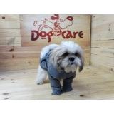 fábrica de peitoral de lona para cachorro valores Santo André