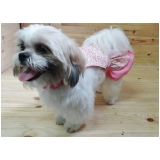 fábrica de vestidos para cachorro Brooklin