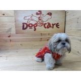 fabricante de cobertores de cachorro valores Rio Pequeno