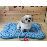 fábricas de camas e almofadas para cachorro Vila Maria