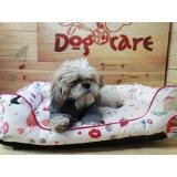 fábrica de manta soft para cachorro
