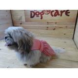 fábricas de fralda absorvente cachorro Sorocaba
