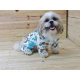 fábrica de roupas para cachorro