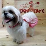 fábrica de vestidos para cachorro