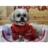 onde encontrar fábrica de mantas e cobertores para cachorro Sumaré