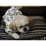 onde encontrar fábrica de pijamas para cachorro Mendonça