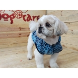 onde encontrar fabricante de roupa para cachorro Jardim Paulista