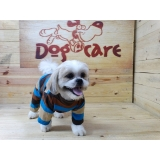 onde encontrar fornecedor de roupa para cachorro com manga Mendonça