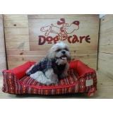 onde encontrar fornecedores de camas para cachorro Santa Isabel