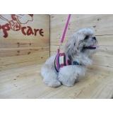 onde encontro fábrica de roupas de cachorro para pet shop Ermelino Matarazzo