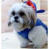onde encontro fornecedor de roupa para cachorro com touca Santa Efigênia