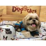 onde encontro fornecedores de camas para cachorro Bom Retiro