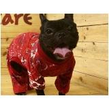 roupa de inverno para cachorro Pari
