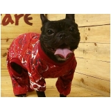 roupa de inverno para cachorro Jardim Paulista