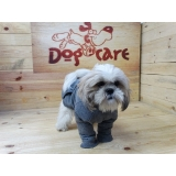 roupa para cachorro fêmea valores Campo Grande