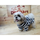 roupa para cachorro filhote valores Santos