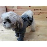 roupa para cachorro pequeno Raposo Tavares