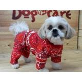 roupa para cachorro de frio